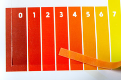 Close-up of a indicator paper with sour testing