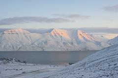 Svalbard nature