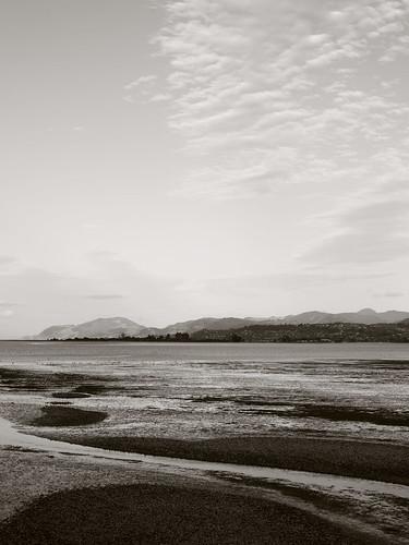 Tidal flats, Waimea Inlet