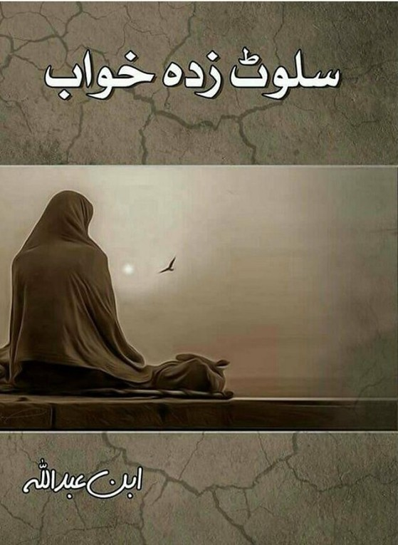 Salwat Zada Khwab Novel By Ibn E Abdullah,Salwat Zada Khwab is based on story of Khayyam, who is known by Magician of Words in his friends, But this magician was victim of depression and loneliness. Then a girl shifa in her life. The story revoling around Love, Sorrow Sadness and Departure