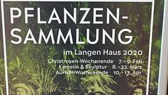 Christrosen Ausstellung Febr.2020