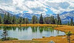 Ellery Lake, Yosemite High Country 2015