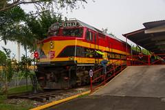 Panama Canal Railway Locomotive Driver