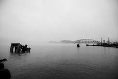 Bridges as the Fog Rolls Through
