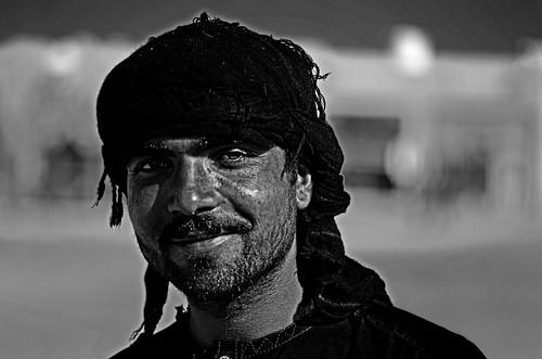 Young Afgan Shepherd