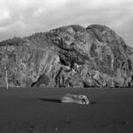 Rock Wood Sand  (Ultrafine eXtreme 100)