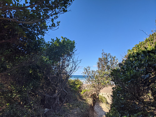Path to dog beach