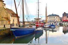 Vieux Bassin  et les bateaux multi-couleurs -Honfleur