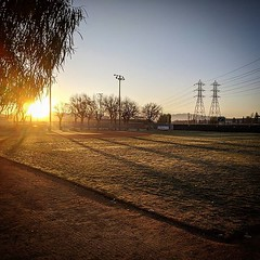 First Tournament #baseball #field #hart #pony #bronco #usssa #usssabaseball #sunrise