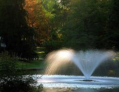 "Cincinnati - Spring Grove Cemetery & Arboretum ""Morning Light On Ceder Lake Fountain"""