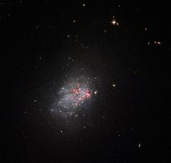 NGC 3737 - HST