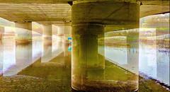 Under the Struve Slough Bridge