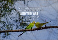 Neale Donald Walsch When you love someone, you grant them total freedom to be who they are, for this is the greatest gift you could give them...