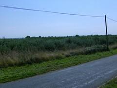 200709_0043
