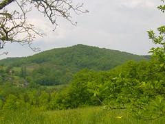 200805_0153