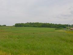 200805_0105