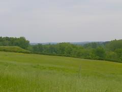 200805_0097 - Photo of Saint-Capraise-de-Lalinde