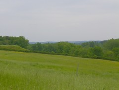 200805_0097