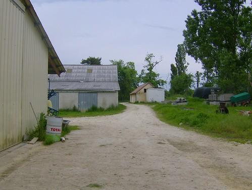 200805_0083