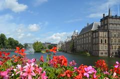 Around the Binnenhof III