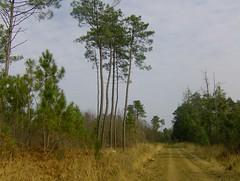 200802_0035