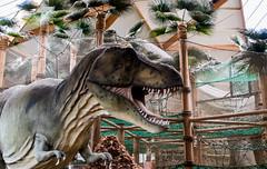 Gaia Zoo ( Februar 2020 )