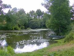 200807_0025