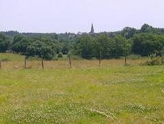 200807_0006