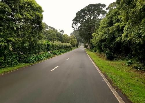 Pico Island - Grand Tour Cycle Pico - Azores