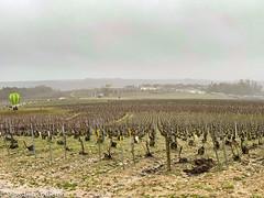 IMG_1516 - Photo of La Chapelle-Vaupelteigne