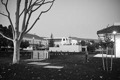 Cuesta College 8