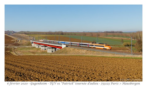 TGV 01 Patrick - Gougenheim