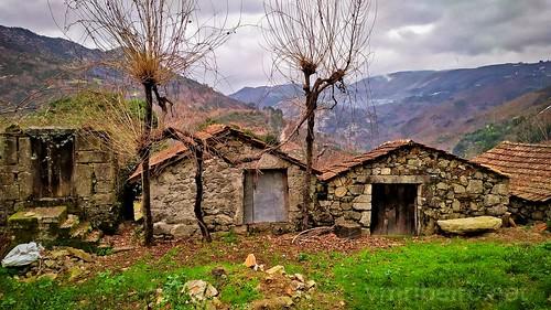 Vida rural em Montalegre