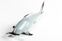 Toy hammer shark on a white background