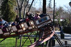 Coaster Blog Holding