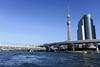Photo:2020-02-09,隅田川 By rapidliner