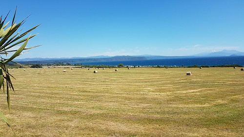 20200103-151916-Lake-Taupo-SJ