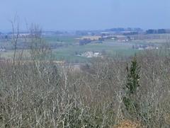 200903_0066