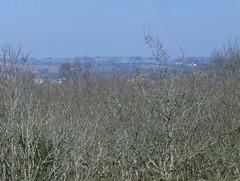 200903_0064