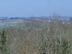 200903_0065