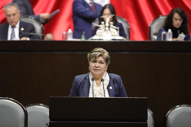 11/02/2020 Tribuna Dip. María Eugenia Hernández Pérez