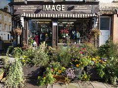 Image, Evershot Road, Finsbury Park