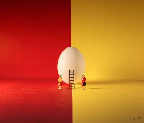 Red, yellow & egg