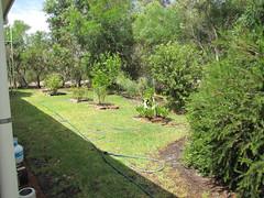South Garden Late Summer – Red Moon Sanctuary, Redmond, Western Australia