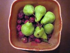 Mariposa Plums & Pears  – Red Moon Sanctuary, Redmond, Western Australia