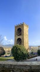Firenze 2020