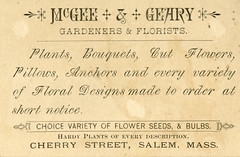 McGee & Geary (Back)