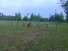 200906_0022