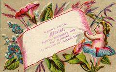 Henry Poor - Florist, c. 1879-1882