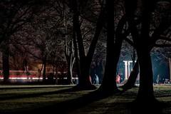 Abends im Nilkheimer Park